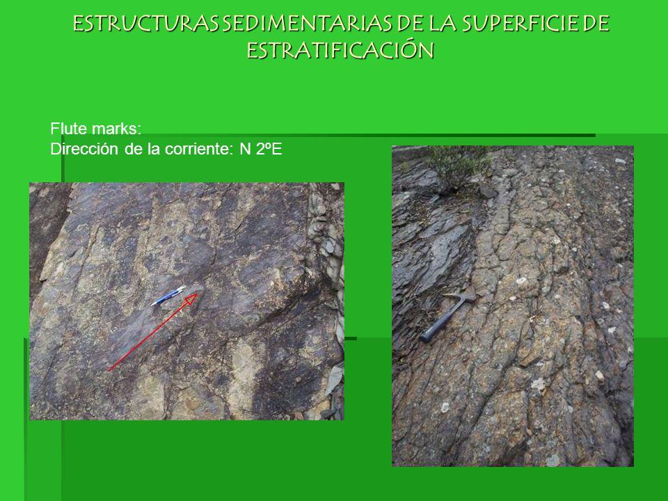ESTRUCTURAS SEDIMENTARIAS DE LA SUPERFICIE DE ESTRATIFICACIÓN Flute marks: Dirección de la corriente: N 2ºE