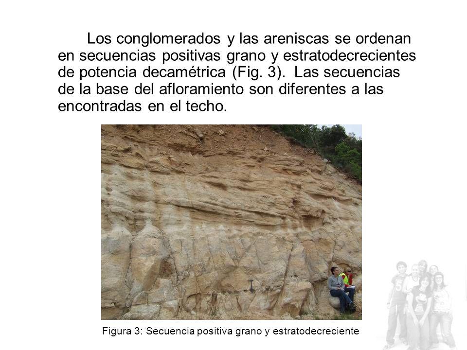 Los conglomerados y las areniscas se ordenan en secuencias positivas grano y estratodecrecientes de potencia decamétrica (Fig.