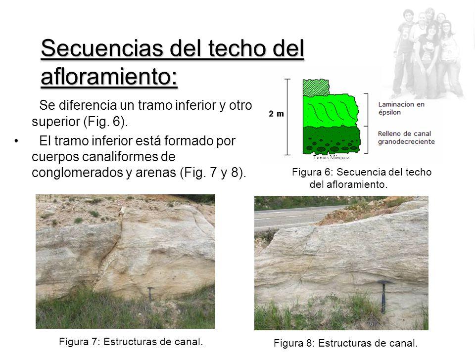 Secuencias del techo del afloramiento: Se diferencia un tramo inferior y otro superior (Fig.