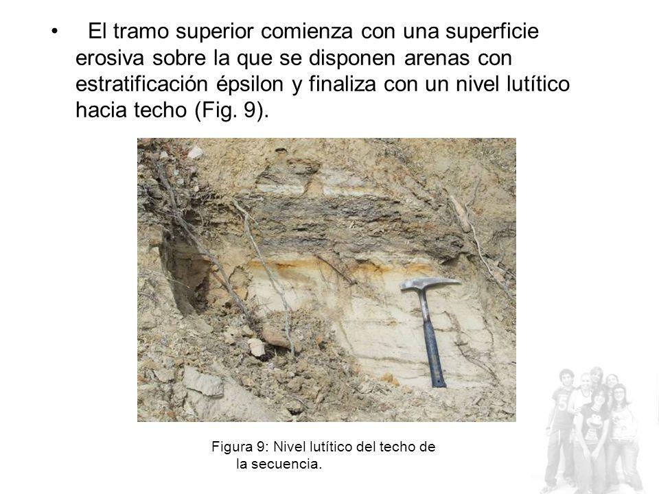 El tramo superior comienza con una superficie erosiva sobre la que se disponen arenas con estratificación épsilon y finaliza con un nivel lutítico hacia techo (Fig.
