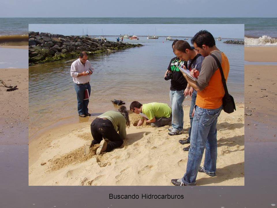 Geólogos vs Ambientólogos