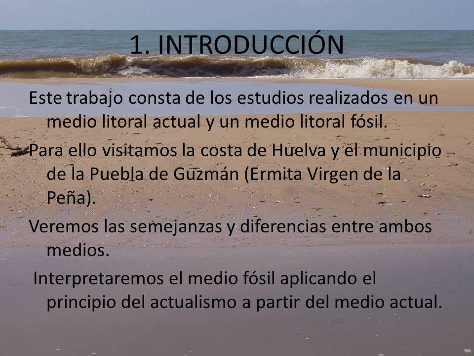 2.LOCALIZACIÓN Figura 1. Marco geológico de la cuenca del Guadalquivir.