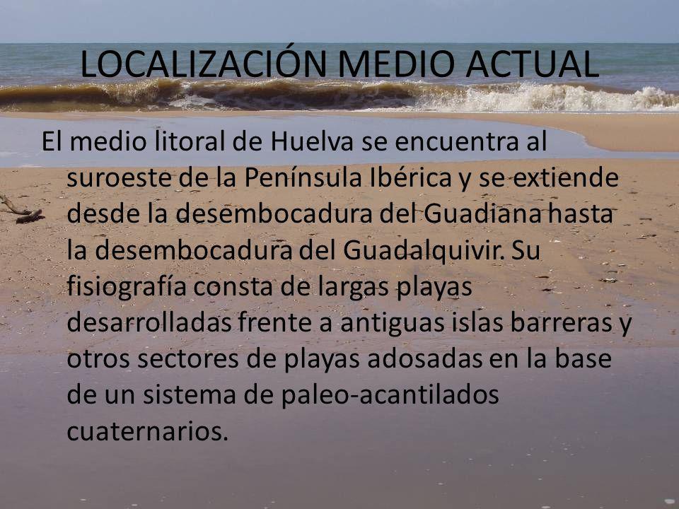 2.2.LOCALIZACIÓN MEDIO FÓSIL Figura 3. Localización geológica y geográfica.