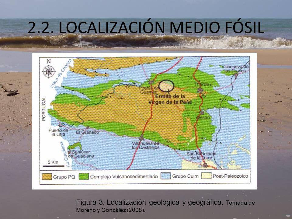 LOCALIZACIÓN MEDIO FÓSIL La zona de estudio se encuentra al oeste en la provincia de Huelva, a unos 45 Km de la actual línea de costa en Huelva.