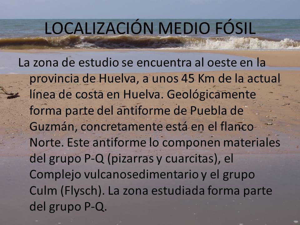 LOCALIZACION MEDIO FÓSIL Cabezo Gordo Cerro del Águila Figura 4 : foto aérea y recorrido de zona estudiada.