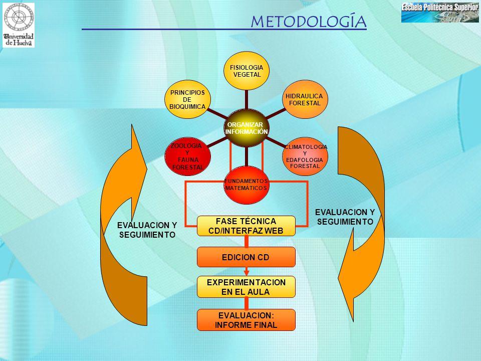 EVALUACION Y SEGUIMIENTO METODOLOGÍA