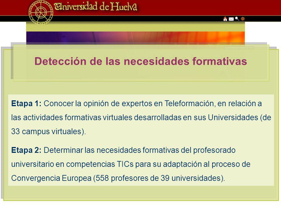 Detección de las necesidades formativas Etapa 1: Conocer la opinión de expertos en Teleformación, en relación a las actividades formativas virtuales desarrolladas en sus Universidades (de 33 campus virtuales).