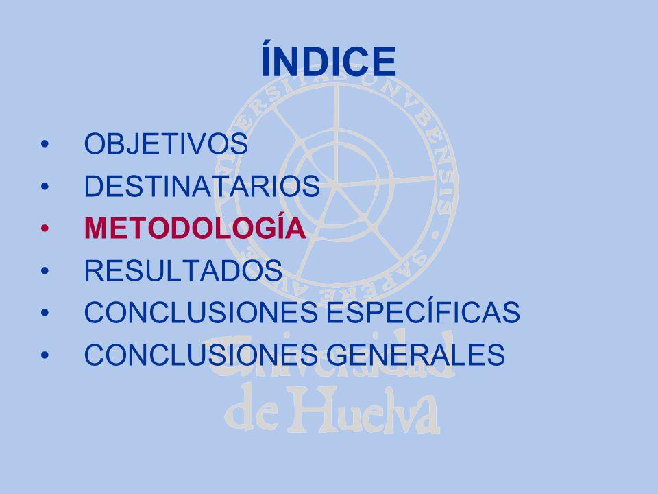 METODOLOGÍA (i) Bases: 1.La experiencia piloto en los cursos de primero y segundo de I.T.