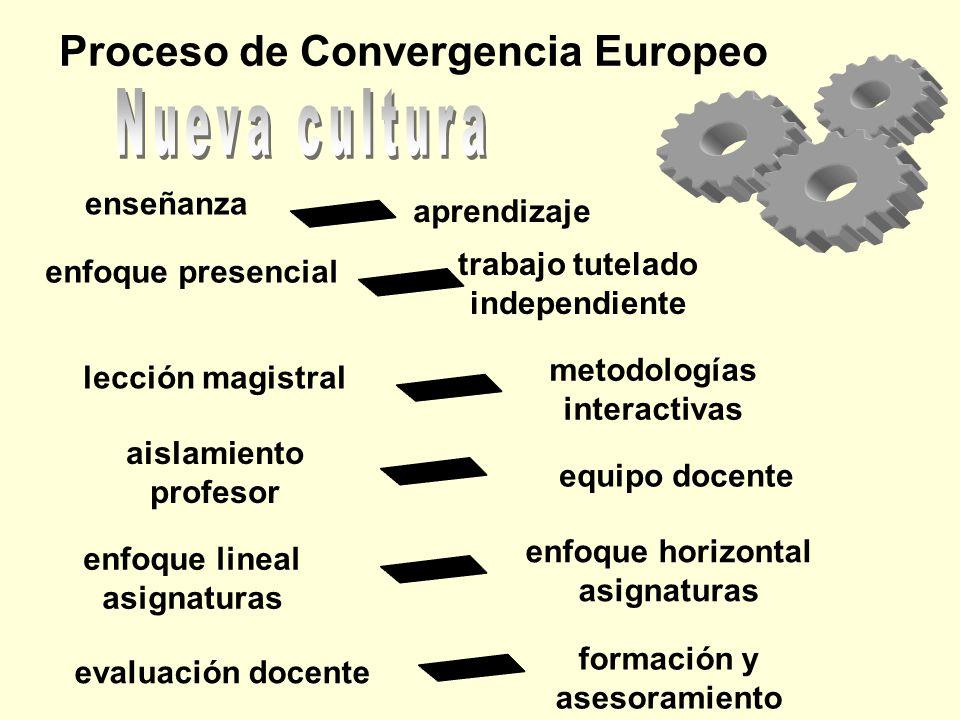 Proceso de Convergencia Europeo enseñanza evaluación docente aprendizaje enfoque presencial formación y asesoramiento lección magistral metodologías i