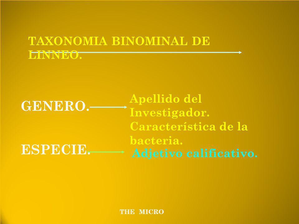 THE MICRO TAXONOMIA BINOMINAL DE LINNEO.GENERO. ESPECIE.