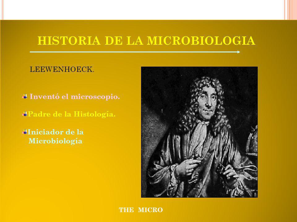 THE MICRO HISTORIA DE LA MICROBIOLOGIA LEEWENHOECK.