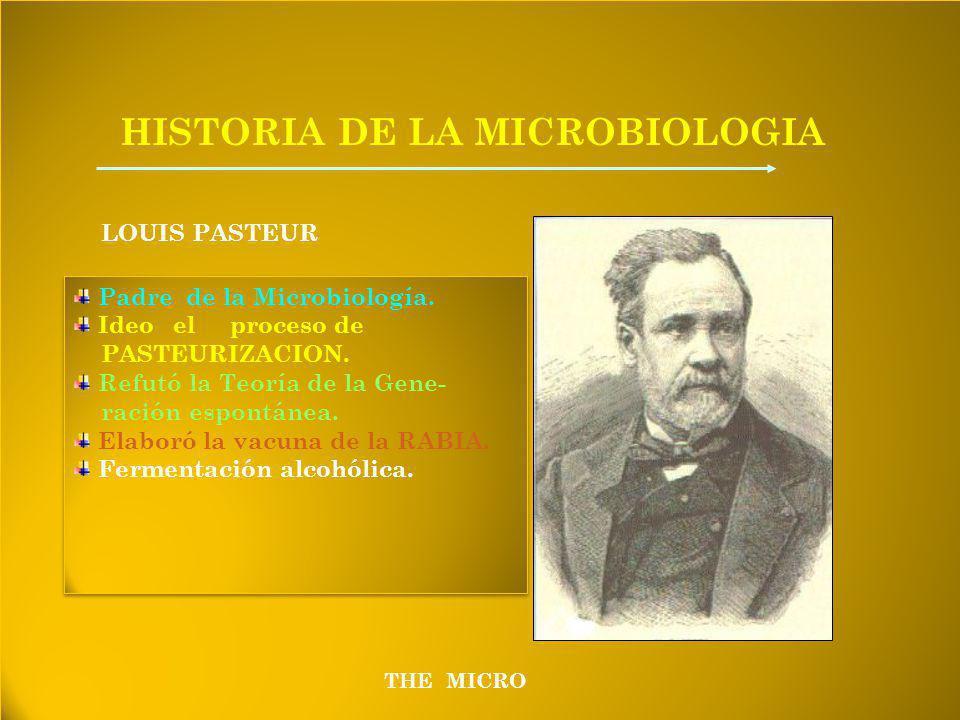 THE MICRO HISTORIA DE LA MICROBIOLOGIA LOUIS PASTEUR Padre de la Microbiología.