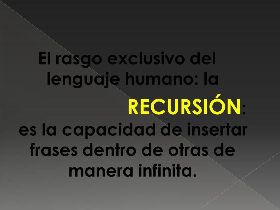 El rasgo exclusivo del lenguaje humano: la RECURSIÓN : es la capacidad de insertar frases dentro de otras de manera infinita.