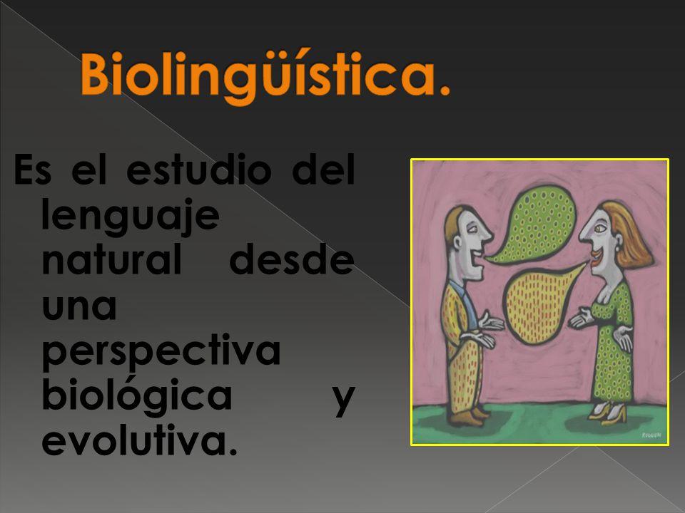Es el estudio del lenguaje natural desde una perspectiva biológica y evolutiva.