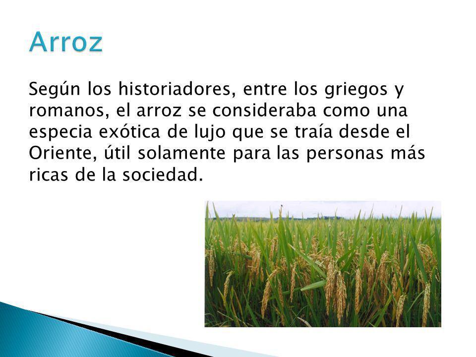 Según los historiadores, entre los griegos y romanos, el arroz se consideraba como una especia exótica de lujo que se traía desde el Oriente, útil sol