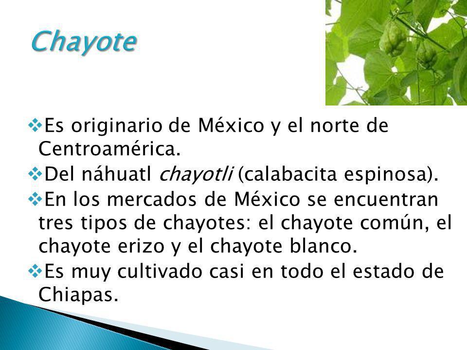 Es originario de México y el norte de Centroamérica. Del náhuatl chayotli (calabacita espinosa). En los mercados de México se encuentran tres tipos de