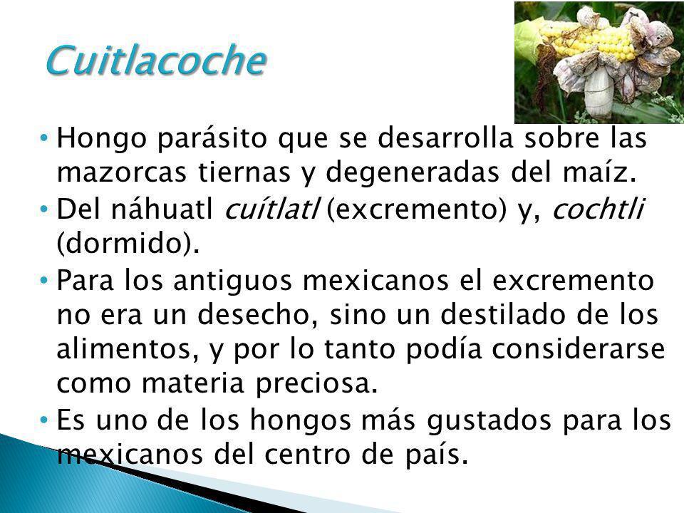 Hongo parásito que se desarrolla sobre las mazorcas tiernas y degeneradas del maíz. Del náhuatl cuítlatl (excremento) y, cochtli (dormido). Para los a
