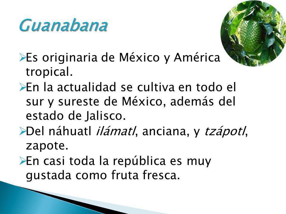 Es originaria de México y América tropical. En la actualidad se cultiva en todo el sur y sureste de México, además del estado de Jalisco. Del náhuatl