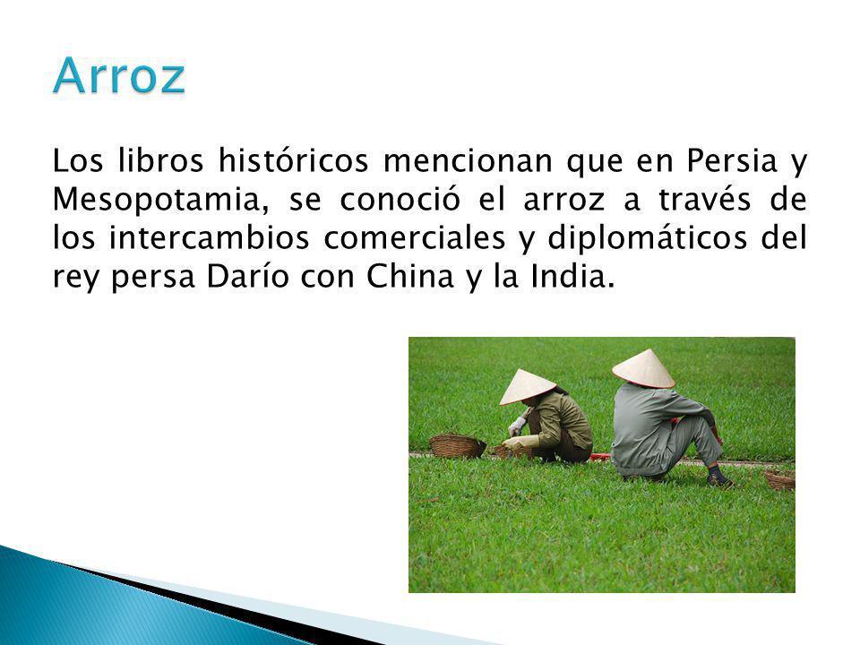 Los libros históricos mencionan que en Persia y Mesopotamia, se conoció el arroz a través de los intercambios comerciales y diplomáticos del rey persa