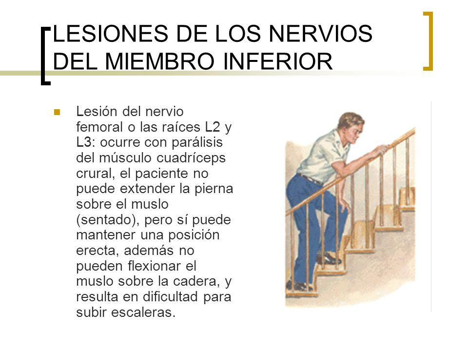 LESIONES DE LOS NERVIOS DEL MIEMBRO INFERIOR Marcha en contoneo de marinero: también llamada del glúteo medio o de Trendelenburg: por lesión del nervio glúteo superior, cuando se levanta el pie, se hunde la pelvis en dicho lado, con la caída de la pelvis hacia el lado sano a cada paso.