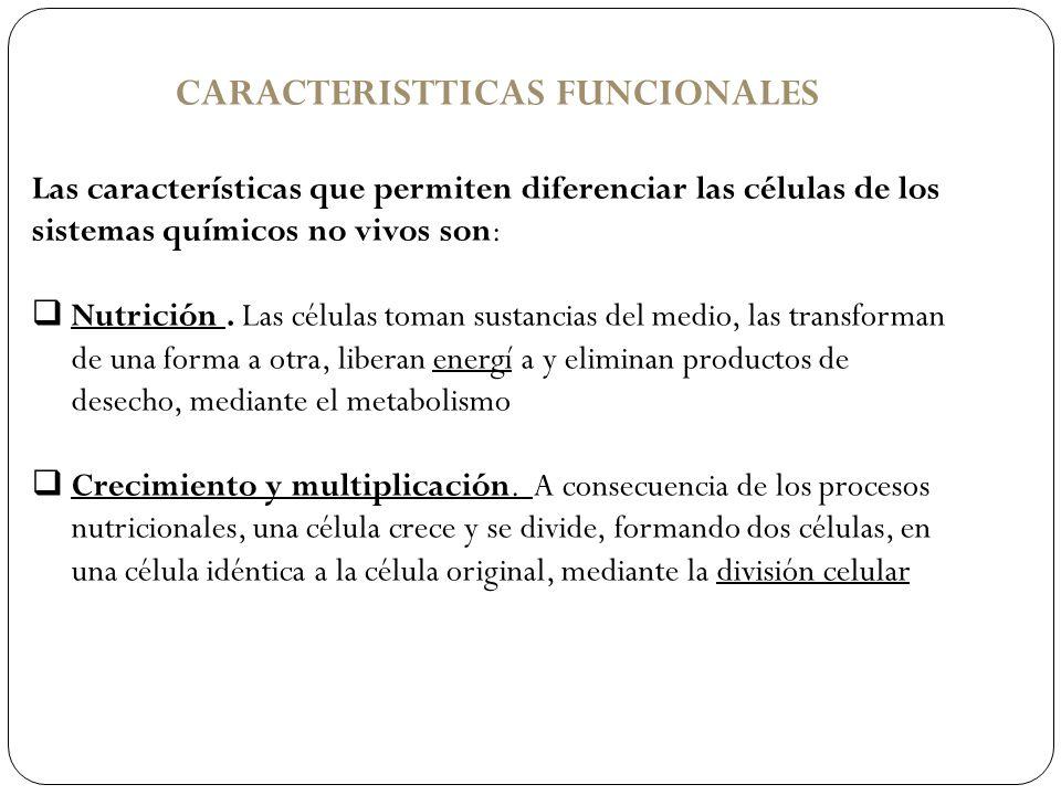 CARACTERISTTICAS FUNCIONALES Las características que permiten diferenciar las células de los sistemas químicos no vivos son: Nutrición. Las células to