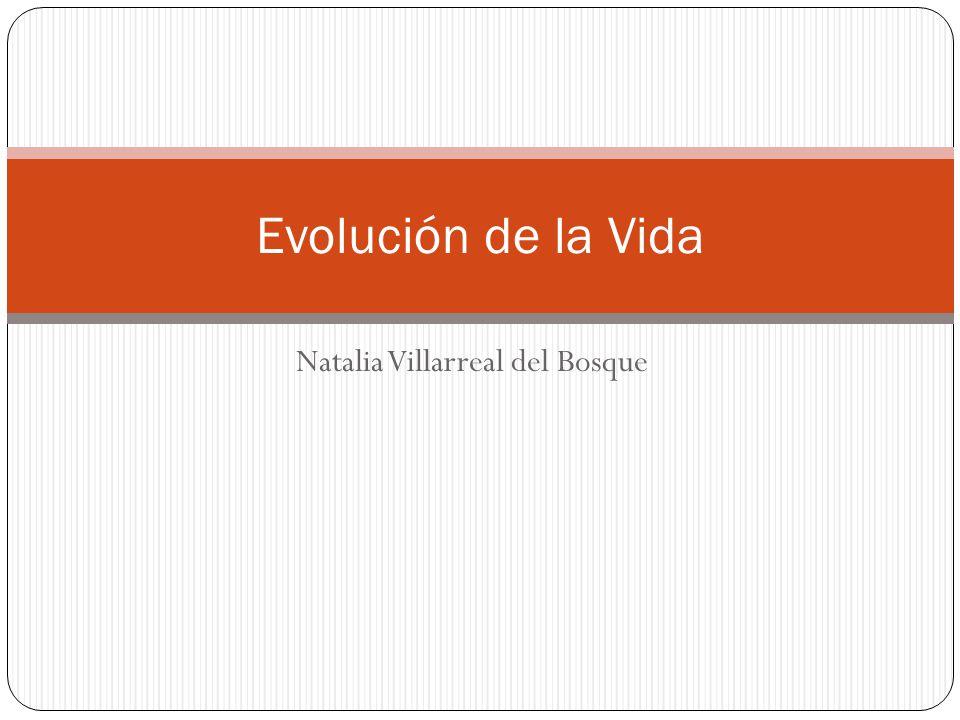 Natalia Villarreal del Bosque Evolución de la Vida