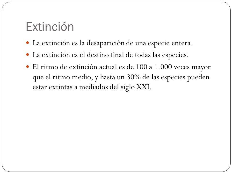 Extinción La extinción es la desaparición de una especie entera. La extinción es el destino final de todas las especies. El ritmo de extinción actual
