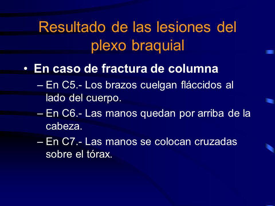 En caso de fractura de columna –En C5.- Los brazos cuelgan fláccidos al lado del cuerpo. –En C6.- Las manos quedan por arriba de la cabeza. –En C7.- L