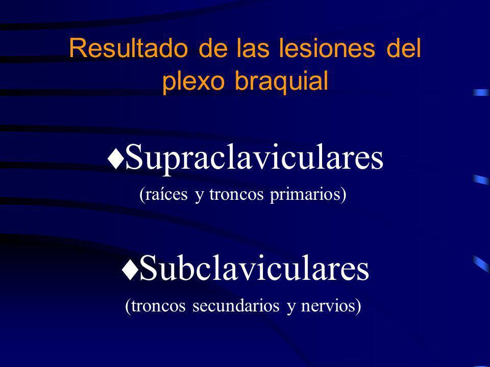 Subclaviculares –Lesión de tronco secundario posterior afecta a: Nervio radial Nervio del subescapular Nervio del dorsal ancho Nervio circunflejo Resultado de las lesiones del plexo braquial