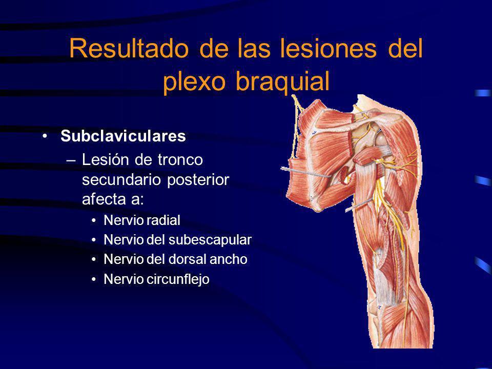 Subclaviculares –La lesión del tronco secundario anteroexterno afecta a: Nervio del pectoral mayor Nervio musculocutáneo Raíz externa del mediano