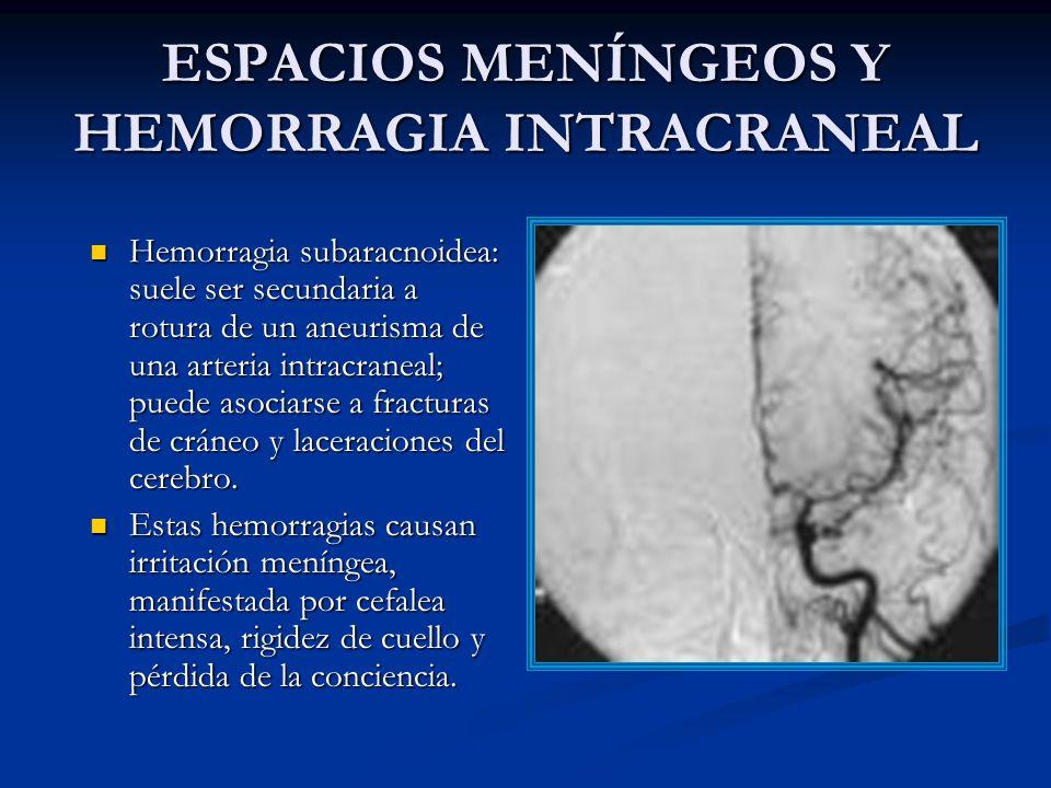ESPACIOS MENÍNGEOS Y HEMORRAGIA INTRACRANEAL Hemorragia subaracnoidea: suele ser secundaria a rotura de un aneurisma de una arteria intracraneal; puede asociarse a fracturas de cráneo y laceraciones del cerebro.