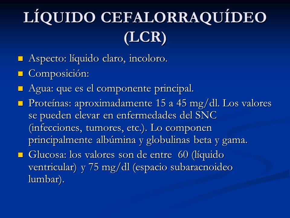LÍQUIDO CEFALORRAQUÍDEO (LCR) Aspecto: líquido claro, incoloro.