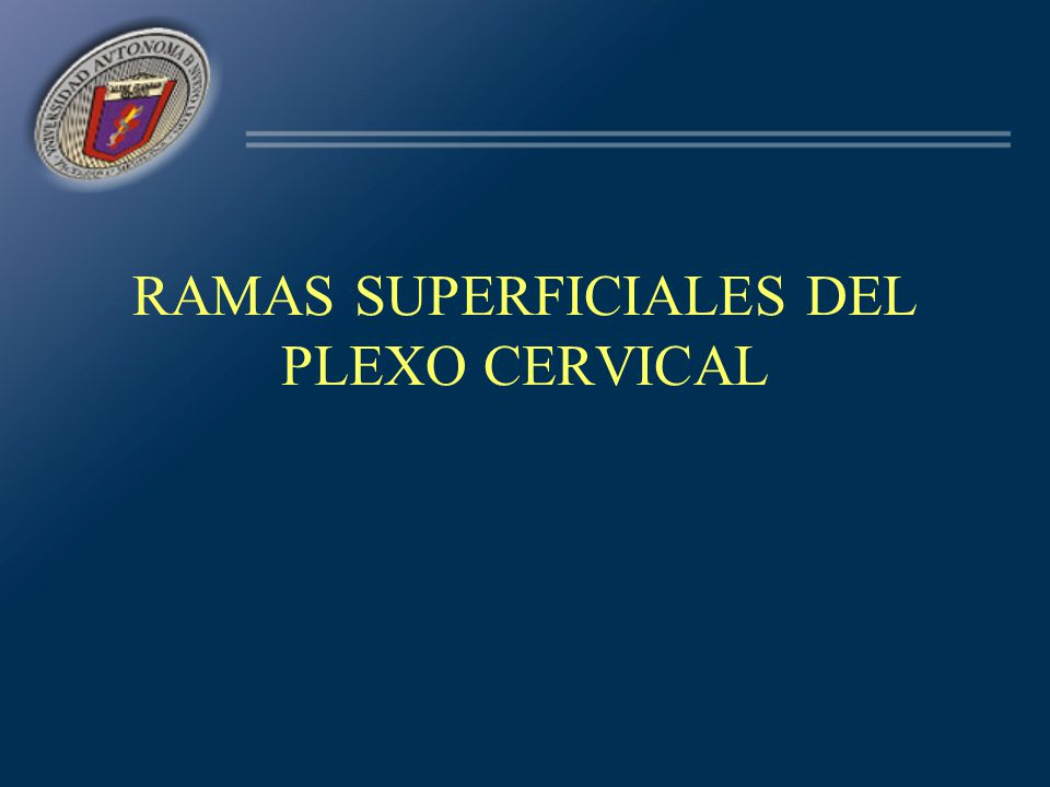 DIVISIONES Supraclaviculares –Raíces y troncos primarios Infraclaviculares –Troncos secundarios C5 C6 C7 C8 D1 C5 C6 C7 C8 D1