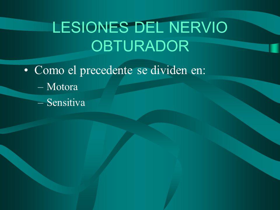 LESIONES DEL NERVIO OBTURADOR Como el precedente se dividen en: –Motora –Sensitiva