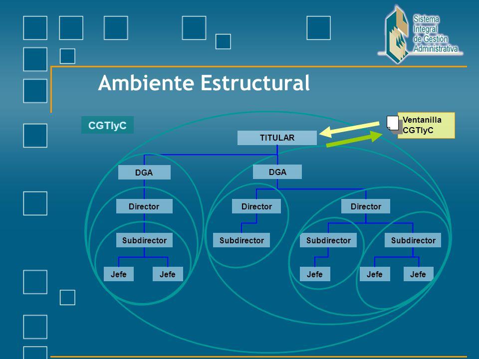 CGTIyC TITULAR DGA Director DGA Director Subdirector Jefe Ambiente Estructural Ventanilla CGTIyC