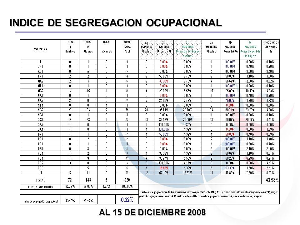 INDICE DE SEGREGACION OCUPACIONAL MANDOS SUPERIORES Actualización al 15 de diciembre 2008.