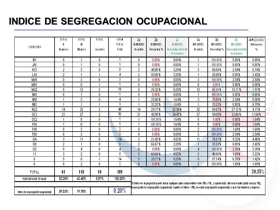 INDICE DE SEGREGACION OCUPACIONAL