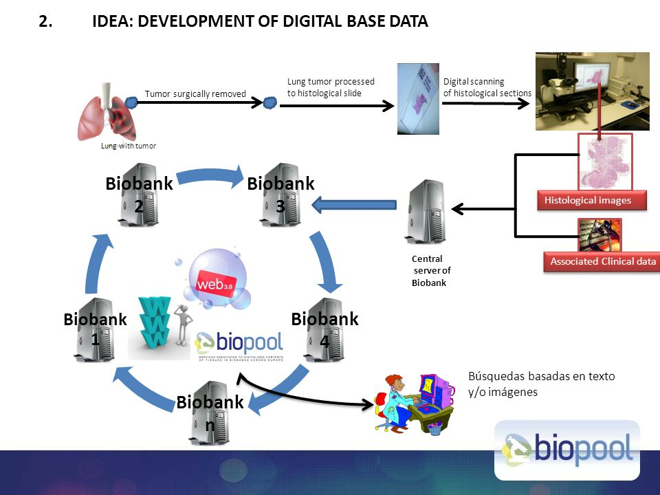 2.IDEA: DEVELOPMENT OF DIGITAL BASE DATA Biobank 3 Biobank 4 Biobank n Biobank 1 Biobank 2 Tumor surgically removed Lung tumor processed to histological slide Lung with tumor Digital scanning of histological sections Central server of Biobank Histological images Associated Clinical data Búsquedas basadas en texto y/o imágenes