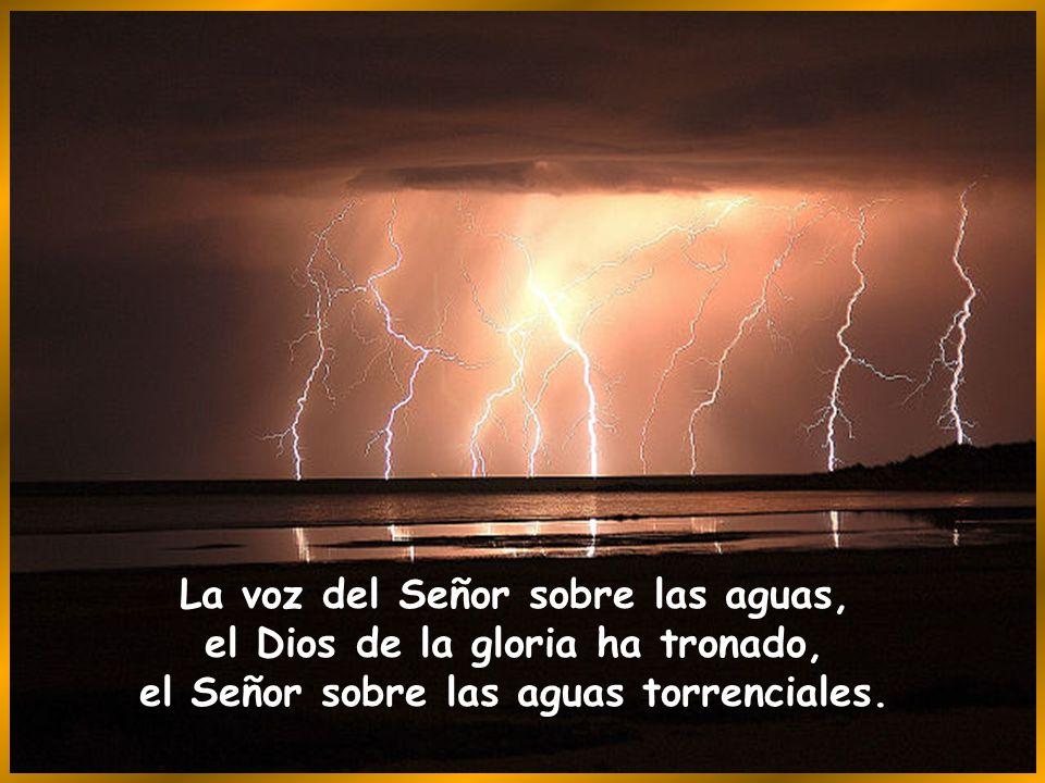 Hijos de Dios, aclamad al Señor, aclamad la gloria y el poder del Señor, aclamad la gloria del nombre del Señor, postraos ante el Señor en el atrio sa