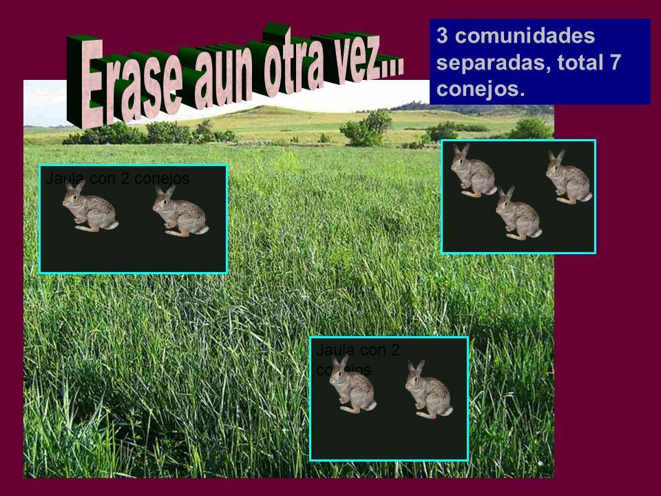 3 comunidades separadas, total 7 conejos.