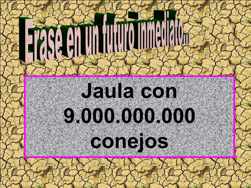 Jaula con 9.000.000.000 conejos