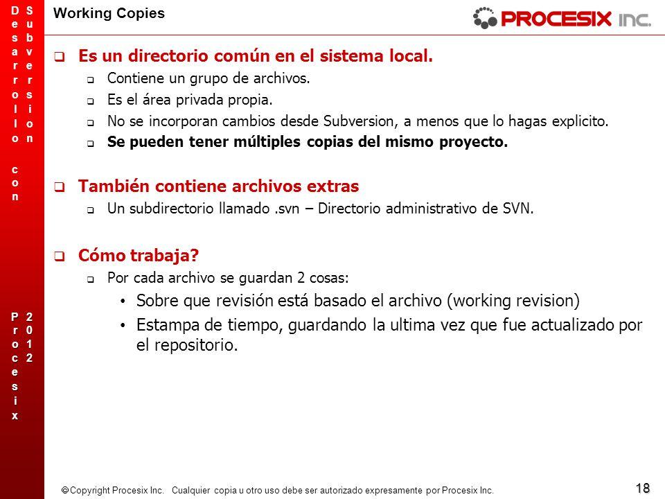 18 Copyright Procesix Inc. Cualquier copia u otro uso debe ser autorizado expresamente por Procesix Inc. Working Copies Es un directorio común en el s