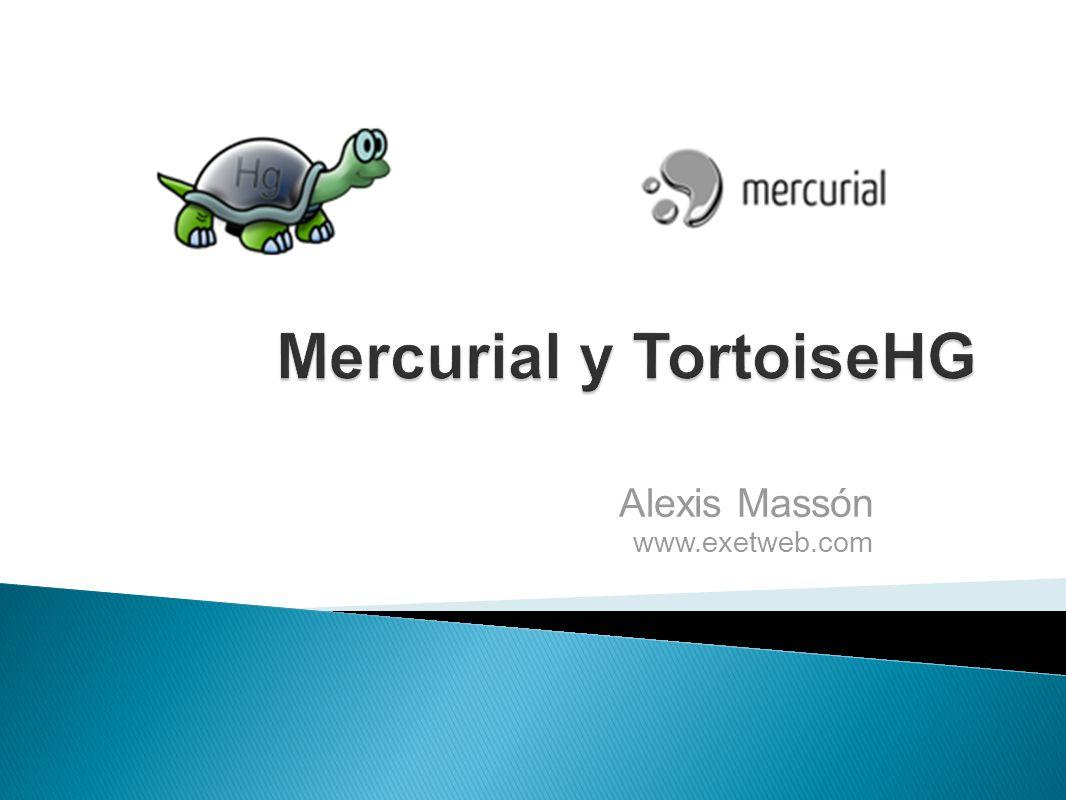 Alexis Massón www.exetweb.com