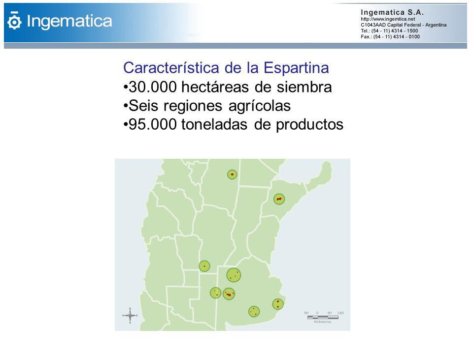 Característica de la Espartina 30.000 hectáreas de siembra Seis regiones agrícolas 95.000 toneladas de productos