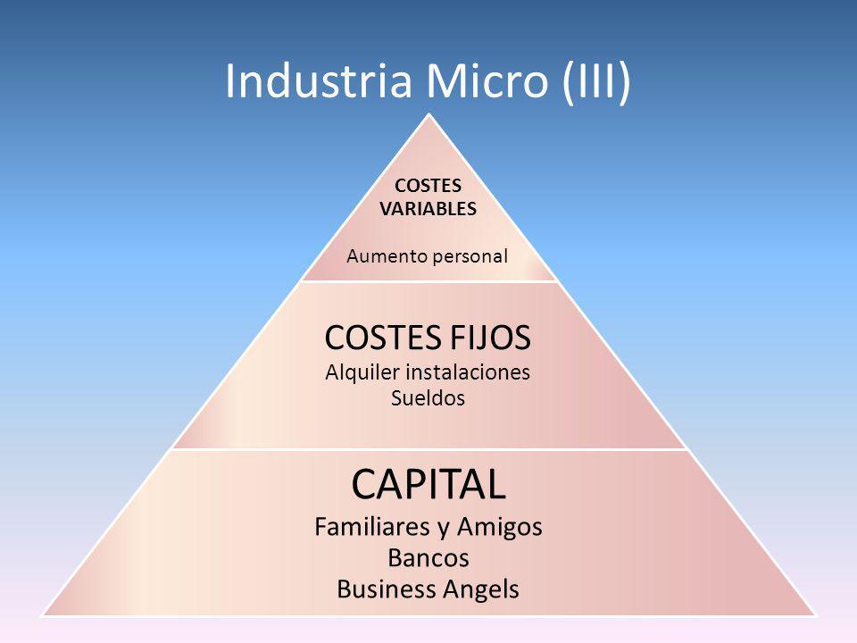 Industria Micro (III) COSTES VARIABLES Aumento personal COSTES FIJOS Alquiler instalaciones Sueldos CAPITAL Familiares y Amigos Bancos Business Angels