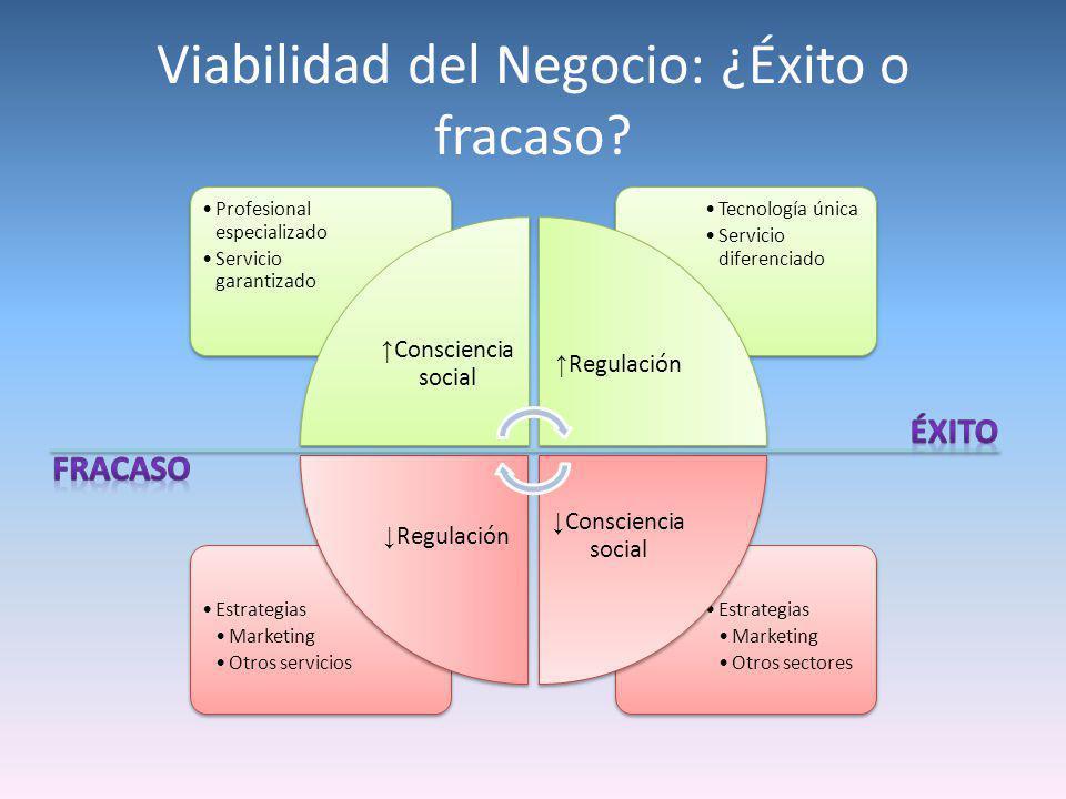 Viabilidad del Negocio: ¿Éxito o fracaso? Estrategias Marketing Otros sectores Estrategias Marketing Otros servicios Tecnología única Servicio diferen