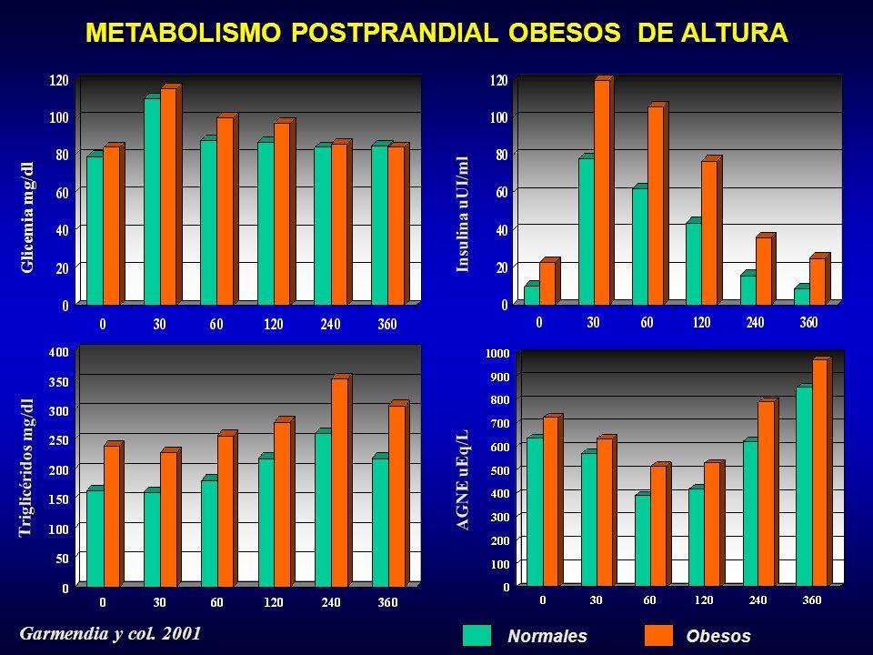 Glicemia mg/dl Insulina uUI/ml Triglicéridos mg/dl AGNE uEq/L Normales Obesos Obesos METABOLISMO POSTPRANDIAL OBESOS DE ALTURA Garmendia y col.