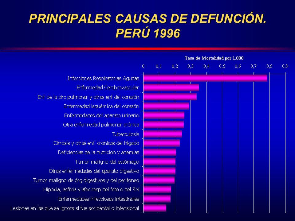PRINCIPALES CAUSAS DE DEFUNCIÓN. PERÚ 1996