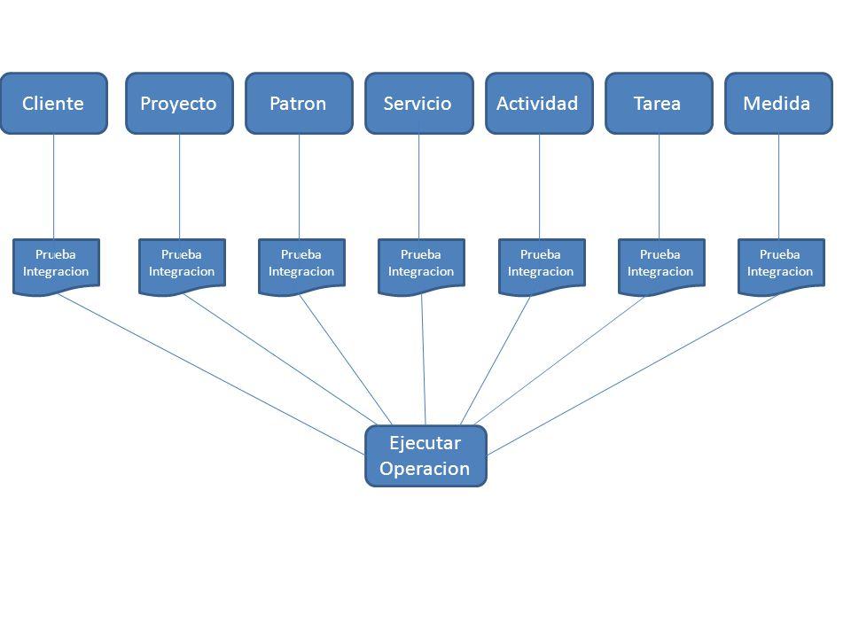 ProyectoPatronClienteServicioActividadTareaMedida Ejecutar Operacion Prueba Integracion