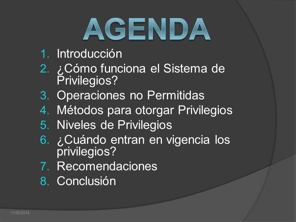 1. Introducción 2. ¿Cómo funciona el Sistema de Privilegios? 3. Operaciones no Permitidas 4. Métodos para otorgar Privilegios 5. Niveles de Privilegio